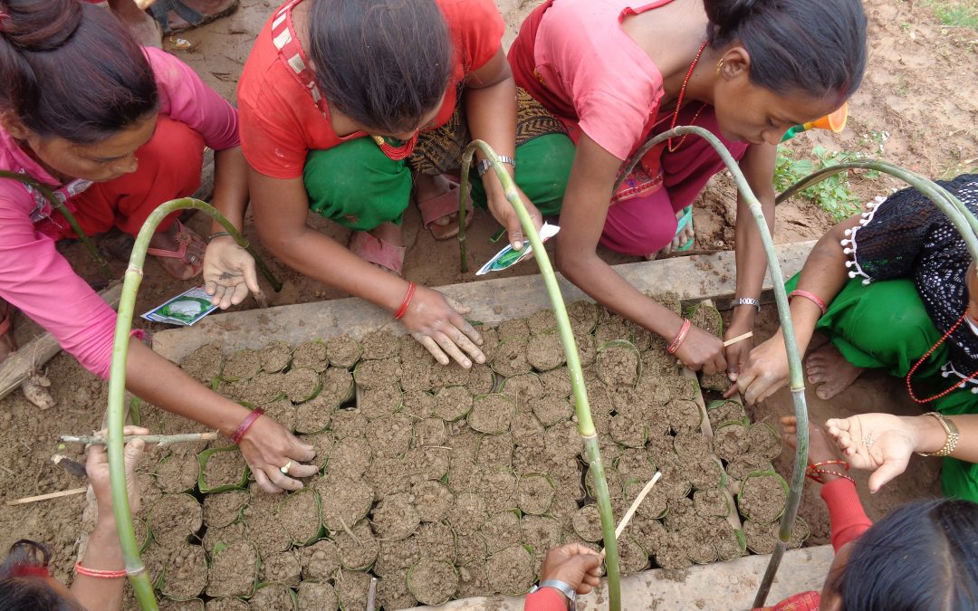 Food Security Enhancement and Agricultural Resilience for the Earthquake Affected Rural Nepalese Farmers (FOSTER)