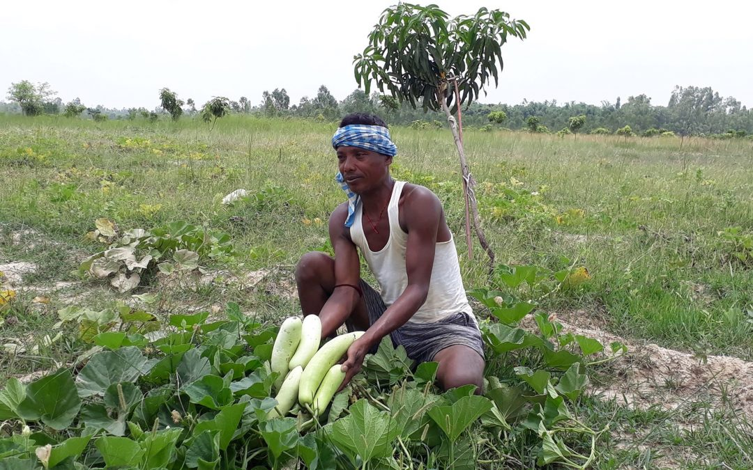 Local Initiatives to Reduce Impacts of Climate Change (LIRIC)
